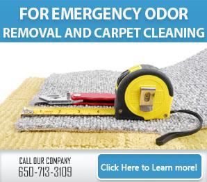 Blog | Why go for carpet cleaning services